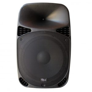 FCA12 PASSIVE MOULDED SPEAKER 12in 250W